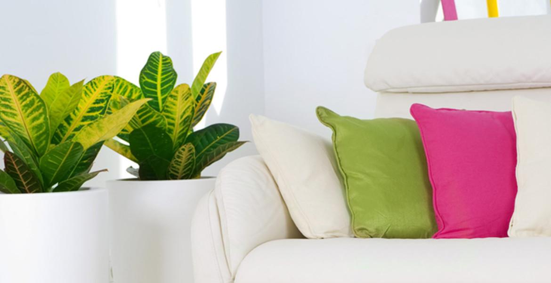 focus le feng shui l 39 ange et le home art. Black Bedroom Furniture Sets. Home Design Ideas